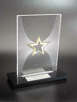 Orçamento para Troféu de Acrílico para Encomenda na Cidade Ademar - Troféu de Acrílico Personalizado