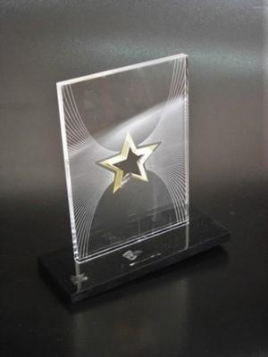 Quanto Custa Troféu de Acrílico Transparente para Formatura São Caetano do Sul - Troféu para Prêmio em Acrílico sob Medida